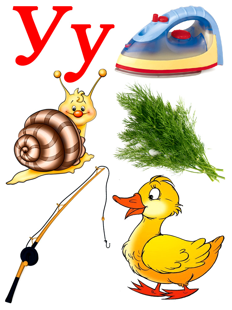 слова на букву о в картинках для детей